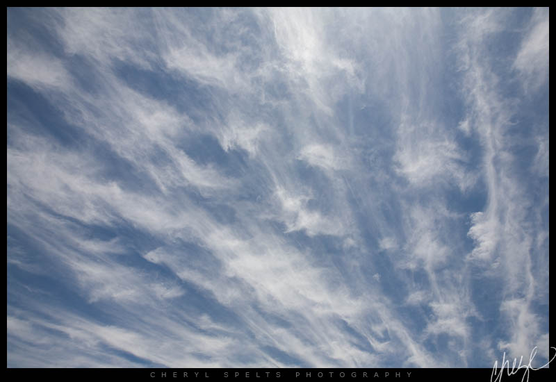 Cirrus Clouds // Photo: Cheryl Spelts