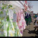 Fallbrook Avocado Festival #8775