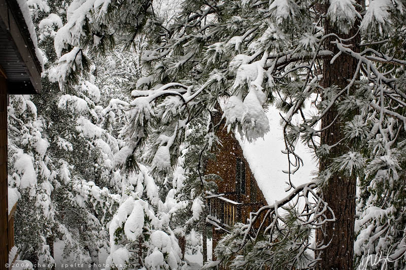 Idyllwild Snow // Photo: Cheryl Spelts