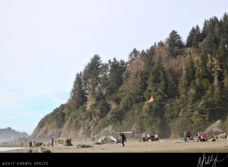A crowded beach day in Humboldt County...